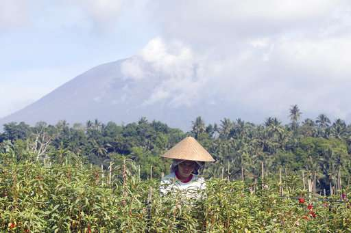 Bali volcano emits wispy plume of steam, flights resume