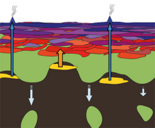 Continental crust model illuminates processes that took place three to four billion years ago