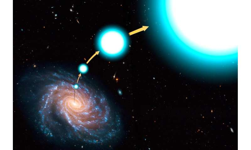 Determining the mass of the Milky Way using hypervelocity stars