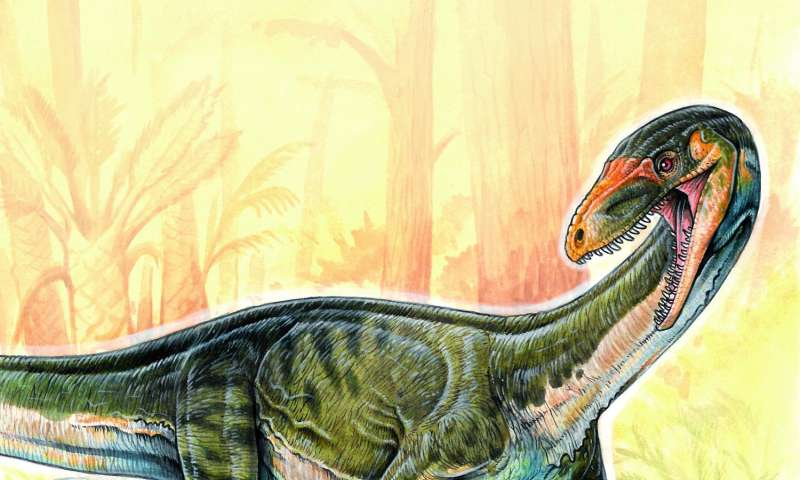 Early dinosaur 'cousin' discovered -- and it's not like scientists thought it'd be