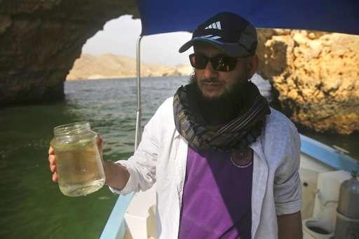 Growing algae bloom in Arabian Sea tied to climate change