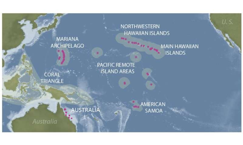 Hawai'i researchers receive funds to forecast coral disease across Pacific Ocean