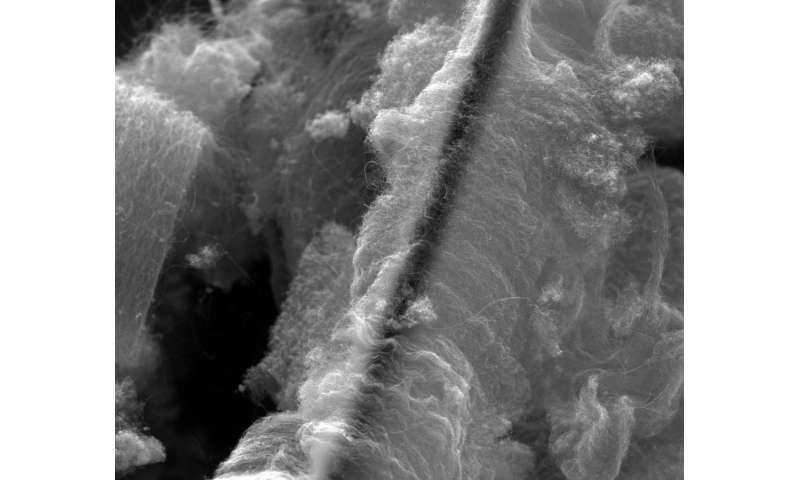 Heavy metals in water meet their match