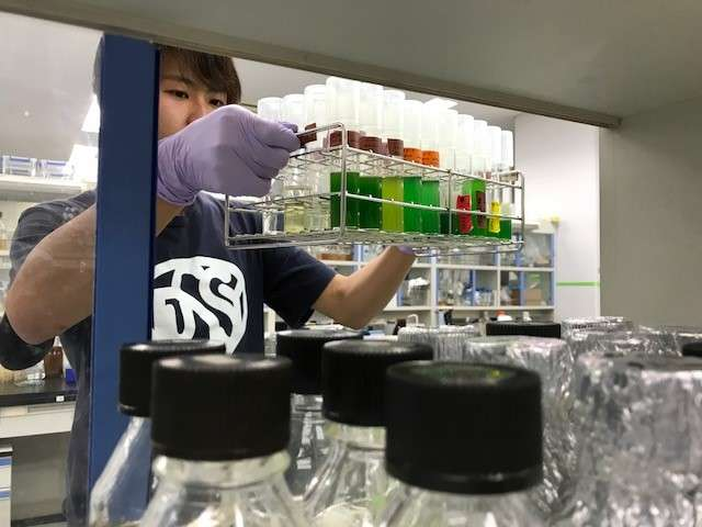 Highly safe biocontainment strategy hopes to encourage greater use of GMOs