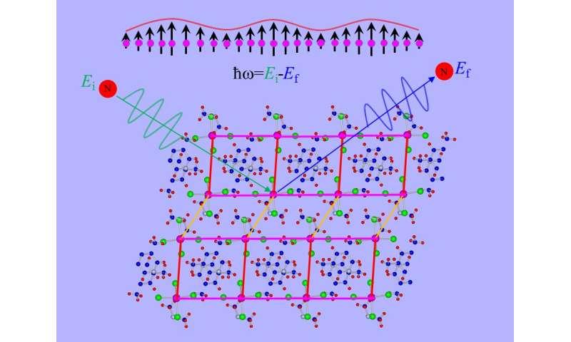 Neutrons detect elusive Higgs amplitude mode in quantum material