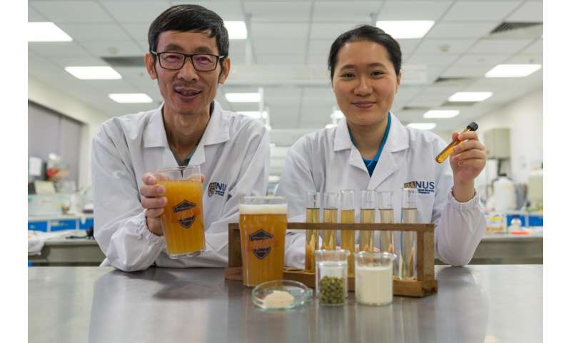 NUS researchers create novel probiotic beer that boosts immunity and improves gut health