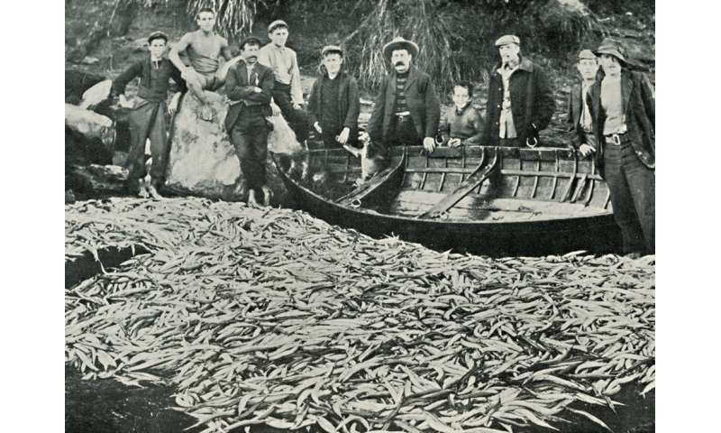 Plenty of fish in the sea? Not necessarily, as history shows