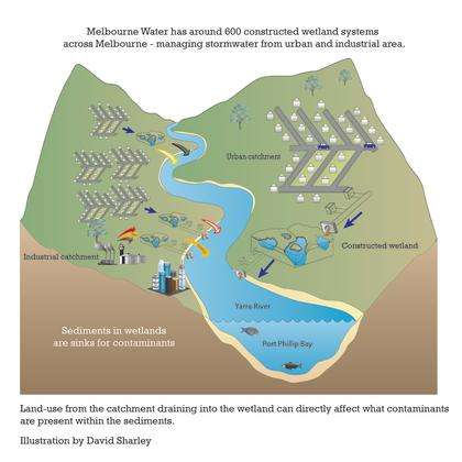 The common insecticide poisoning our rivers and wetlands