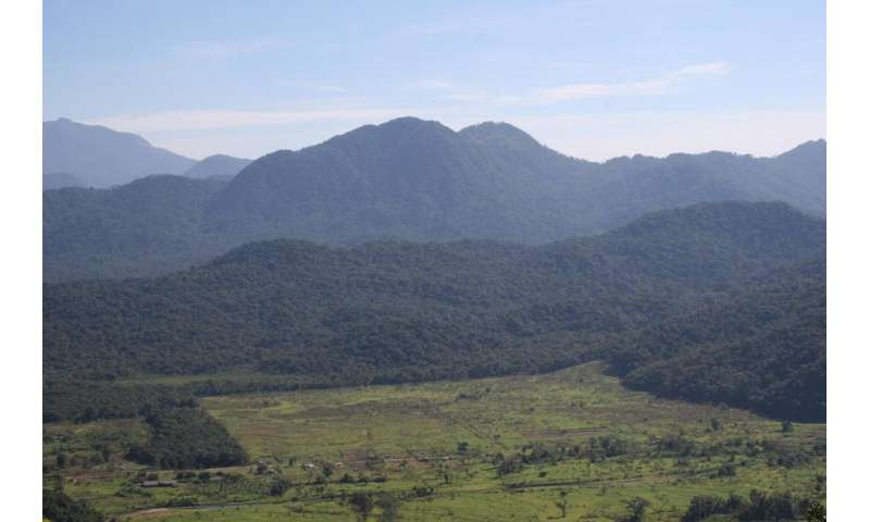 Tropical forest reserves slow down global warming