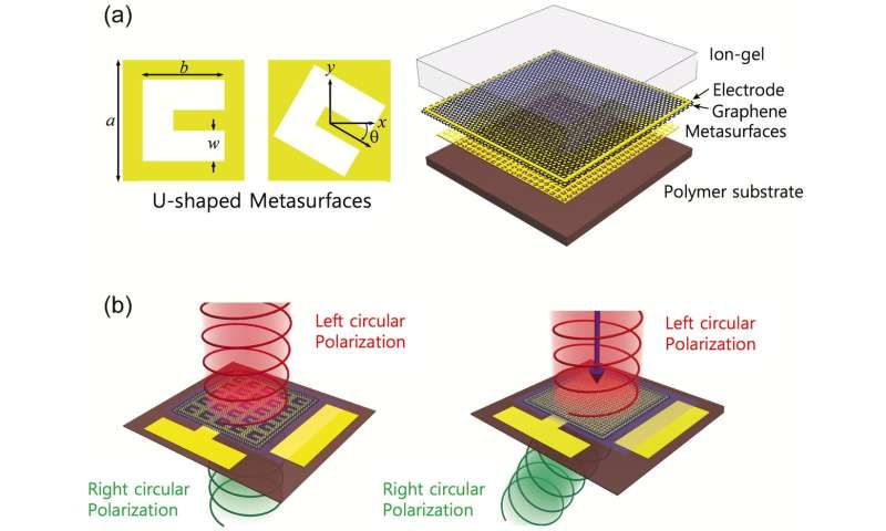 Ultrathin and Flat Graphene Metalenses  Gain More Properties