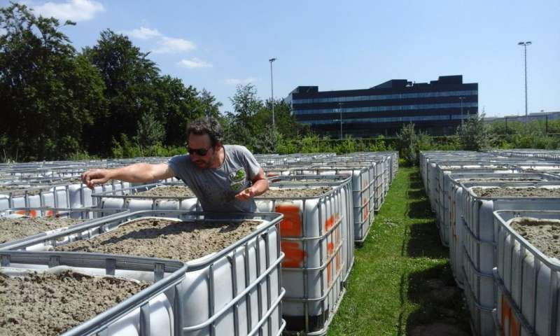 Utrecht researchers construct ecosystem of the future