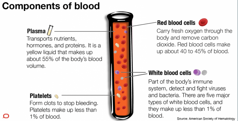 Why do we actually have blood?