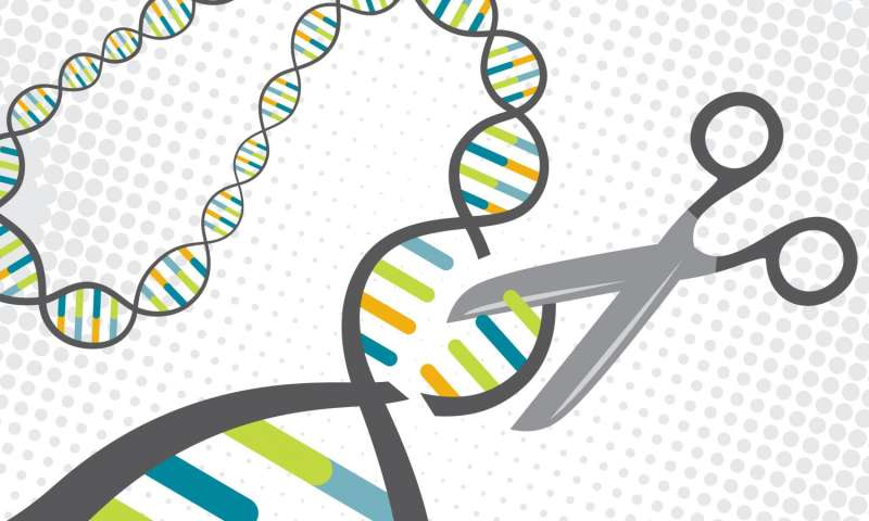 New technique enables safer gene-editing therapy using CRISPR