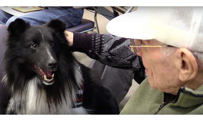 New study shows therapy dogs improve health and wellbeing of older war veterans