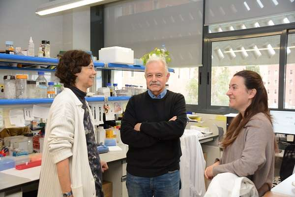 Researchers find a gene that causes Opitz C syndrome