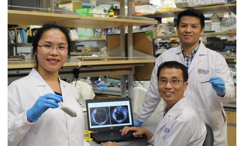 "Scientists develop novel chemical ""dye"" to improve liver cancer imaging"