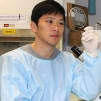 Researchers uncover new way of growing stem cells