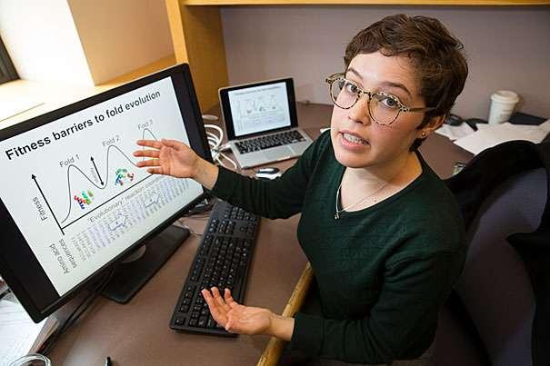 Researchers probe protein diversity