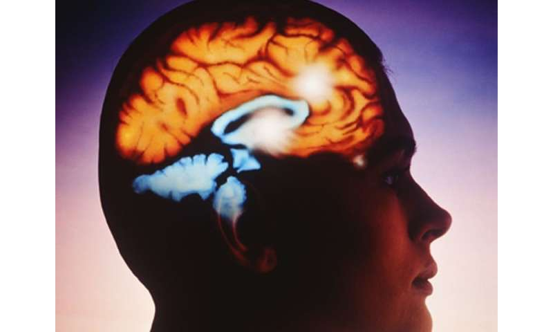 2HELPS2B model identifies seizure risk in critically ill