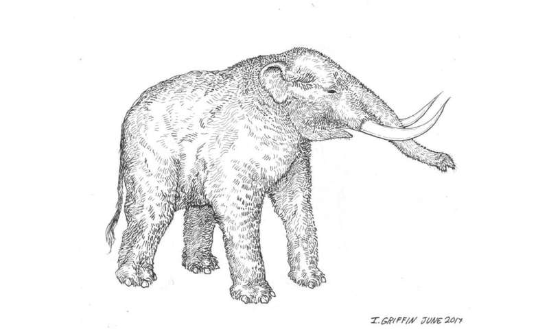 3-D scanning fossils to help researchers around the world study mastodons