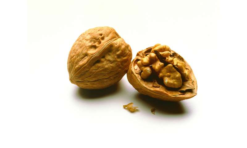 A faster, less costly way to process walnuts