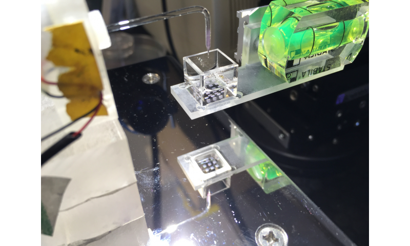 A new method for the 3-D printing of living tissues