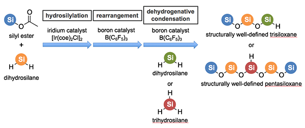 Development of technique for one-pot synthesis of siloxane bonds