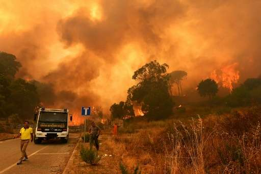 Firefighters get to work in the Annunziata district of Messina as a fire rages on July 10, 2017