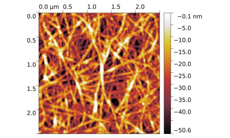 Physicists explain metallic conductivity of thin carbon nanotube films