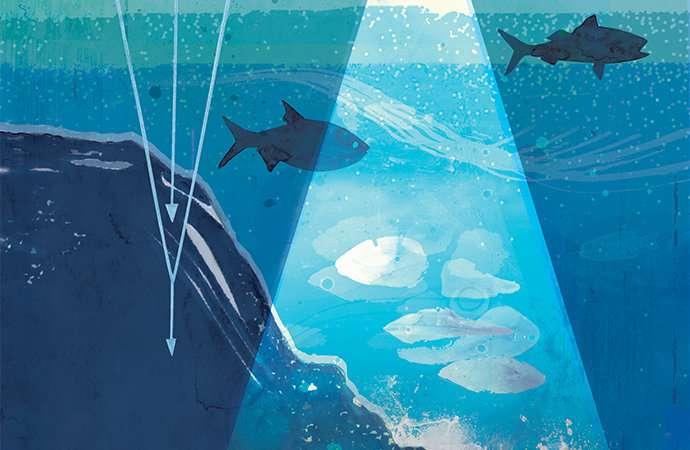 Researchers investigate the ocean's deep biosphere