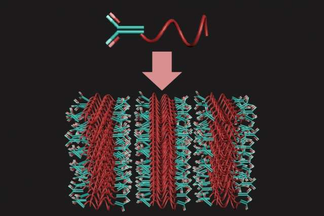 3-D antibody arrays could help diagnose malaria and other diseases