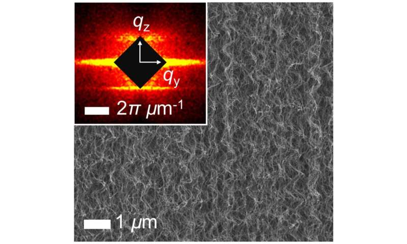 Carbon nanotubes stand at attention