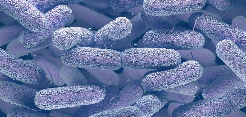 Controlling the spread of antibiotic resistant bacteria