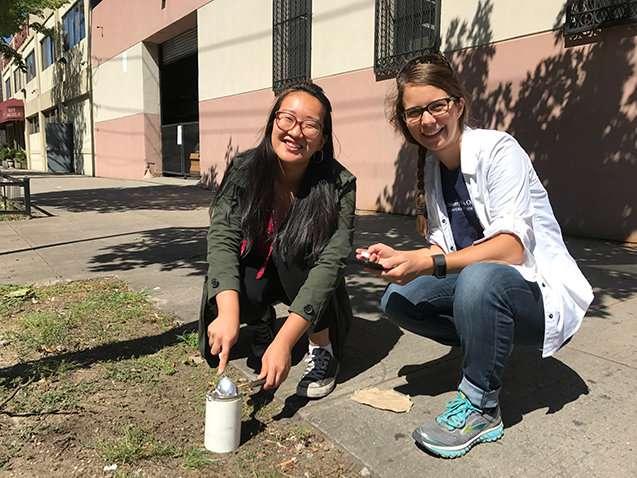 High levels of lead contaminate many backyards in Brooklyn neighborhood