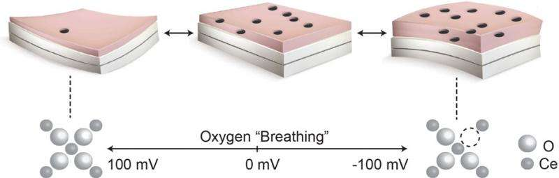 """High-temperature devices made from films that bend as they """"breathe"""""""