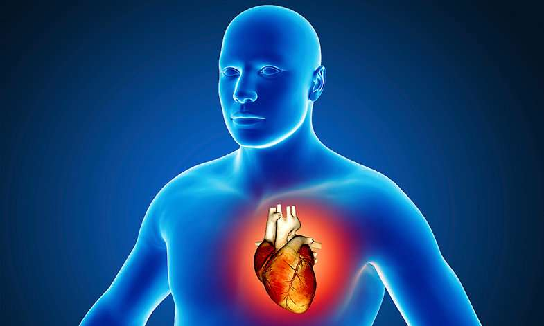 New study identifies those most at risk of developing a life-threatening heart infection