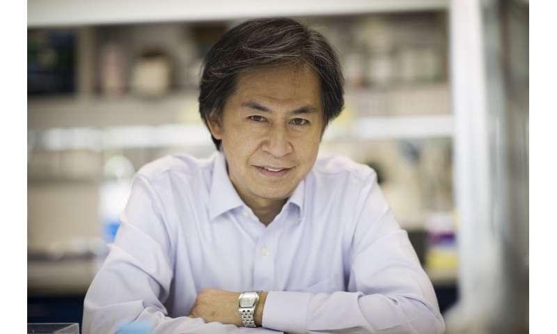 Preclinical study demonstrates promising treatment for rare bone disease