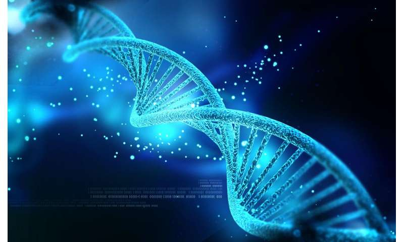 Researchers identify mechanism of oncogene action in lung cancer