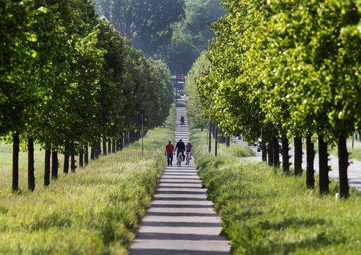 Where are the trees? Not Paris, new 'Green View Index' finds