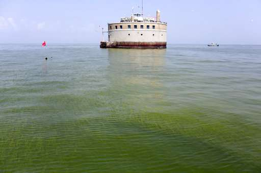 Researchers creating warning system for toxic algae in lakes