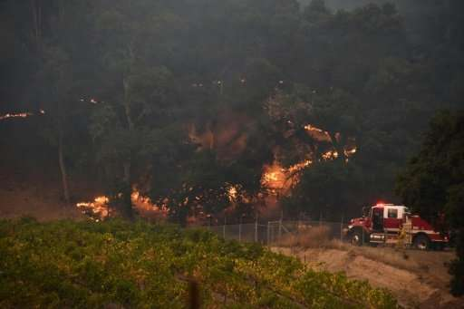 Firefighters protect a vineyard in Santa Rosa, California