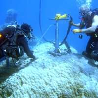 High temperatures, not ocean acidification, is threatening the growth of coral
