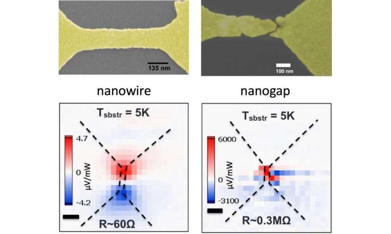 Scientists find nanogaps in plasmonic gold wires enhance voltage when excited