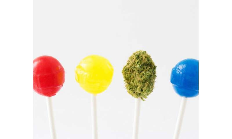 Study finds that improvements are needed for edible marijuana product labels to ensure safety
