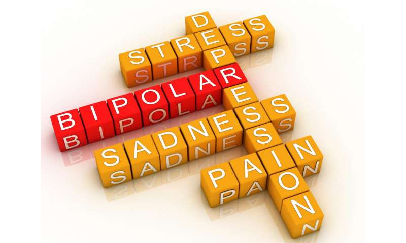 Researchers develop online support for people with Bipolar Disorder