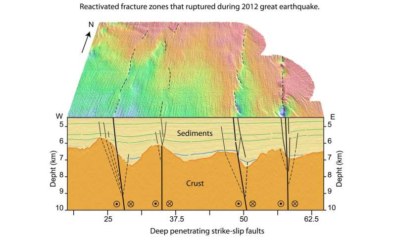 Data from 2102 earthquake suggests new plate boundary may be forming in Indian Ocean