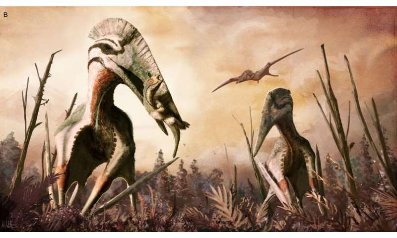 Fossils of giant pterosaurs found in Transylvania