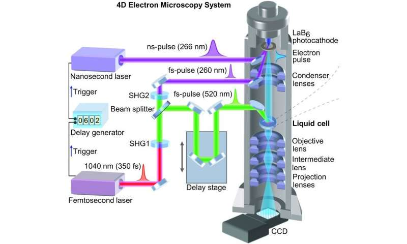 Combining pulsed laser with electron gun allows for capturing fast motion of nanoparticles in a liquid
