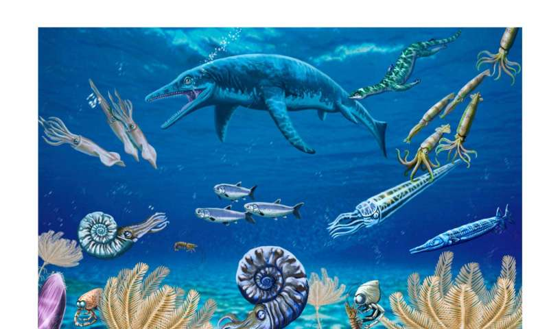 New fossil discovery suggests sea life bounced back after the 'Great Dying' faster than thought