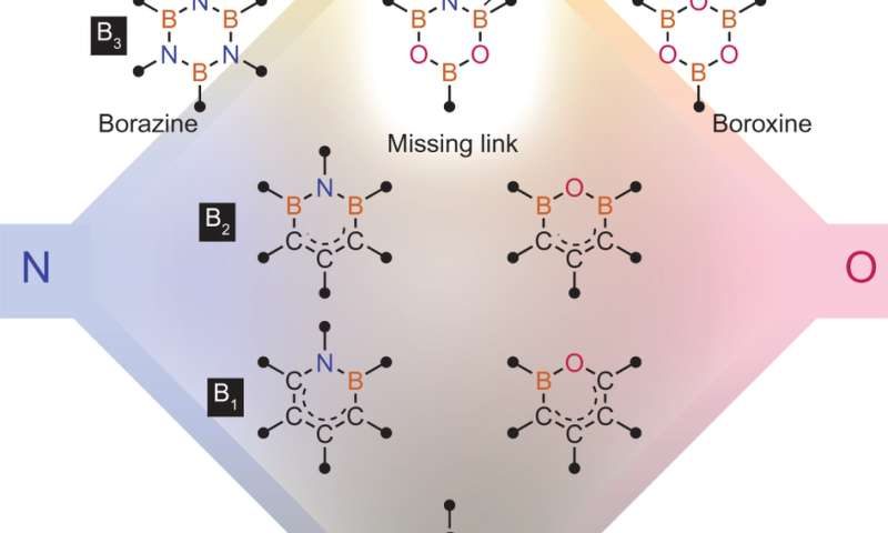B3NO2 ring system serves as a versatile catalyst for amide bond formation